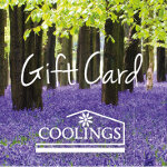 Coolings Voucher Bluebell Woodland