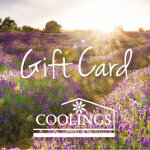 Coolings Voucher Lavender Sunshine
